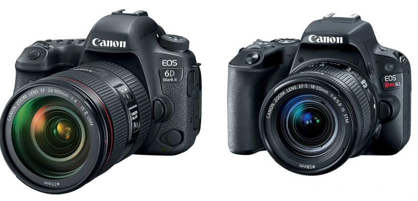 Canon EOS 6D Mark II and EOS Rebel SL2