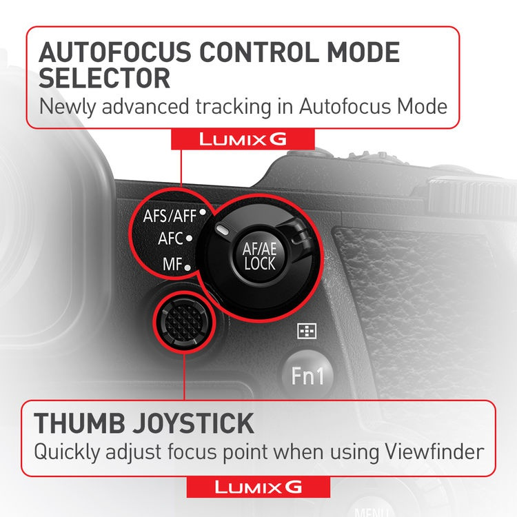 This promotional graphic explains some of the functions of the Panasonic Lumix G9's rear controls.