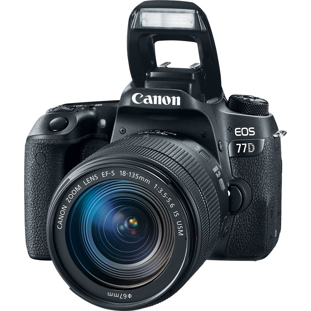 The Canon EOS 77D has a built-in pop-up flash.