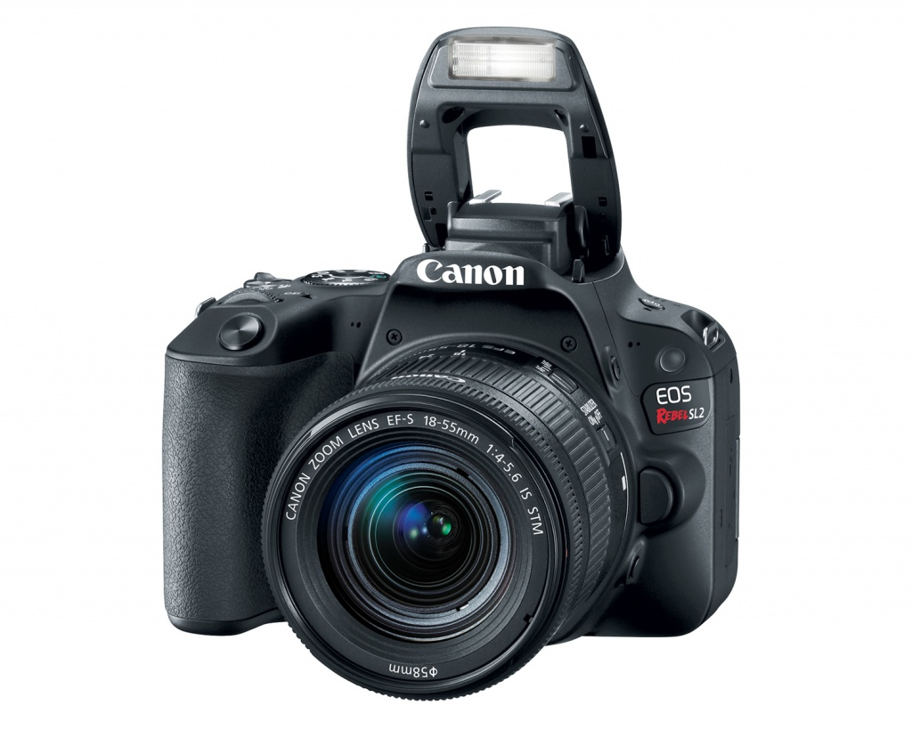 The Canon EOS Rebel SL2 has pop-up flash.