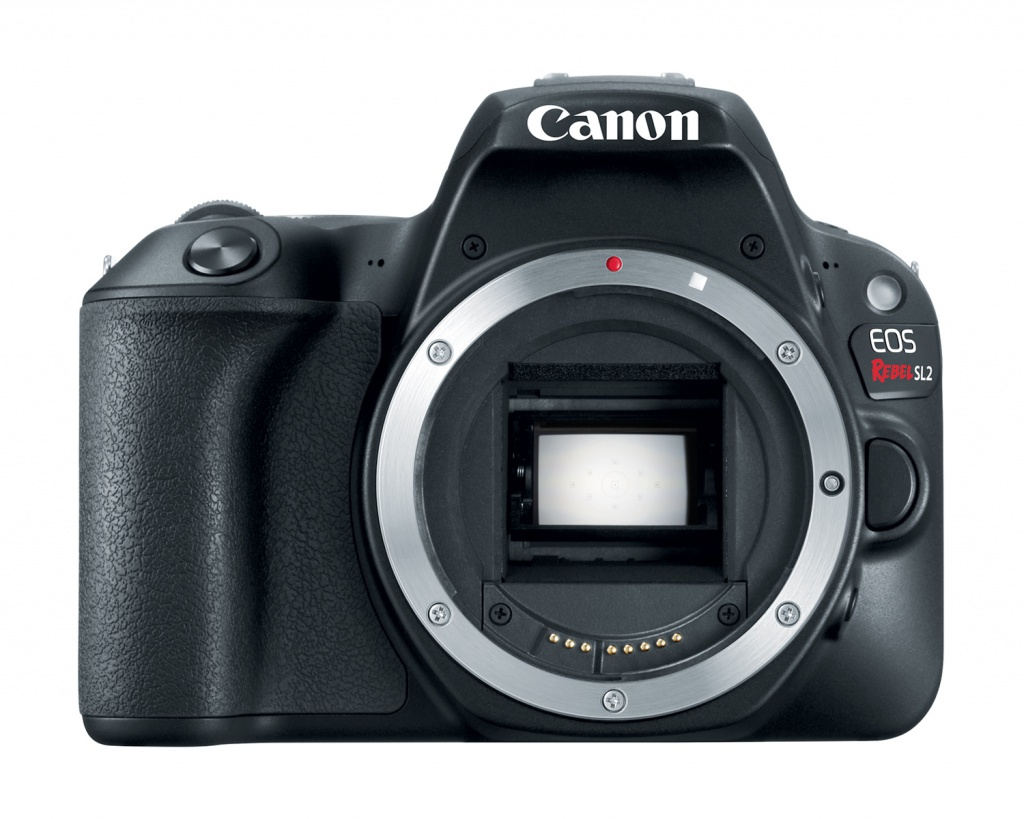 The Canon EOS Rebel SL2 uses a 24.2-MP CMOS sensor.