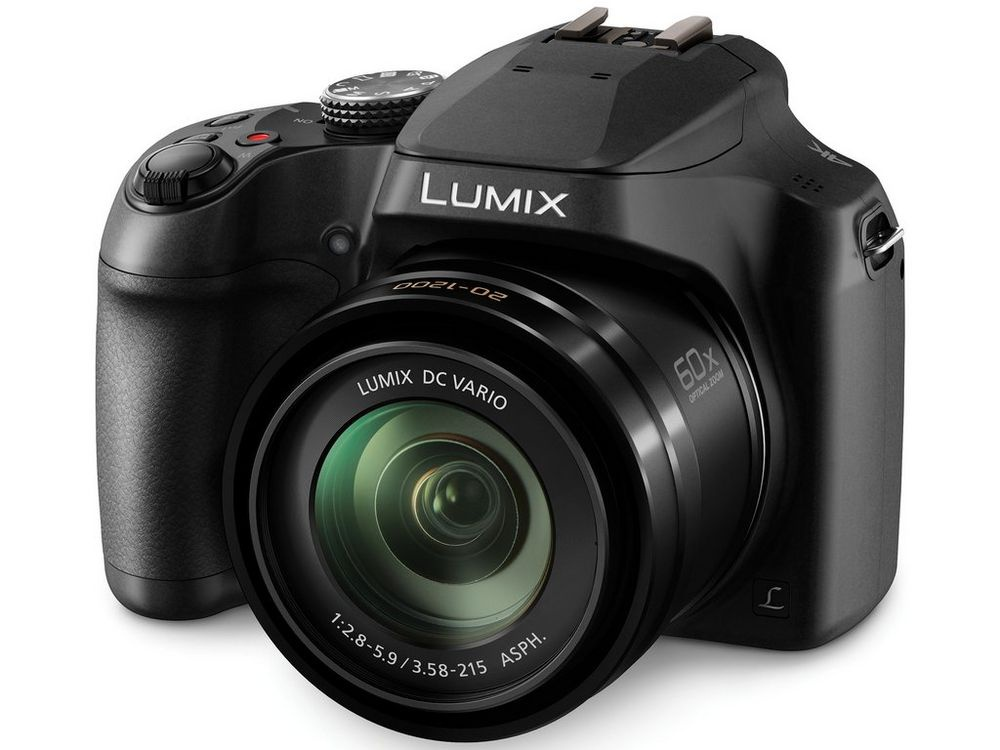 The Panasonic Lumix FZ80 has a 60X superzoom.