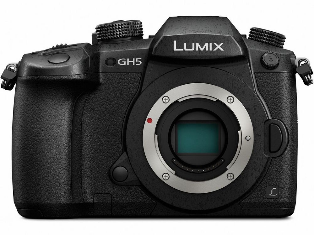 The Panasonic Lumix GH5 uses the Micro Four Thirds lens mount.