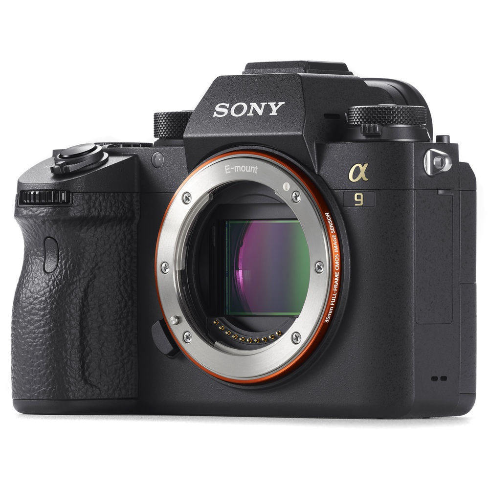 The Sony A9 has mechanical and electronic shutters.